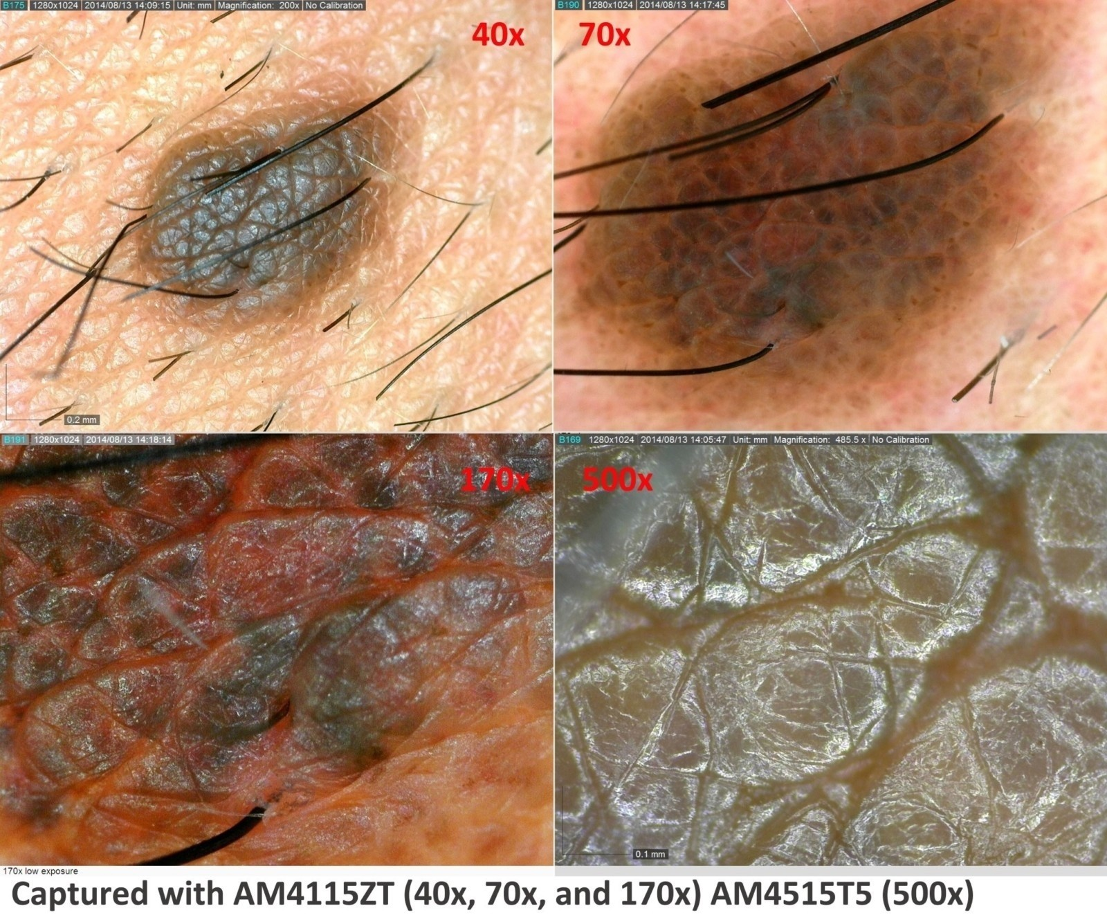 dermatology_09r