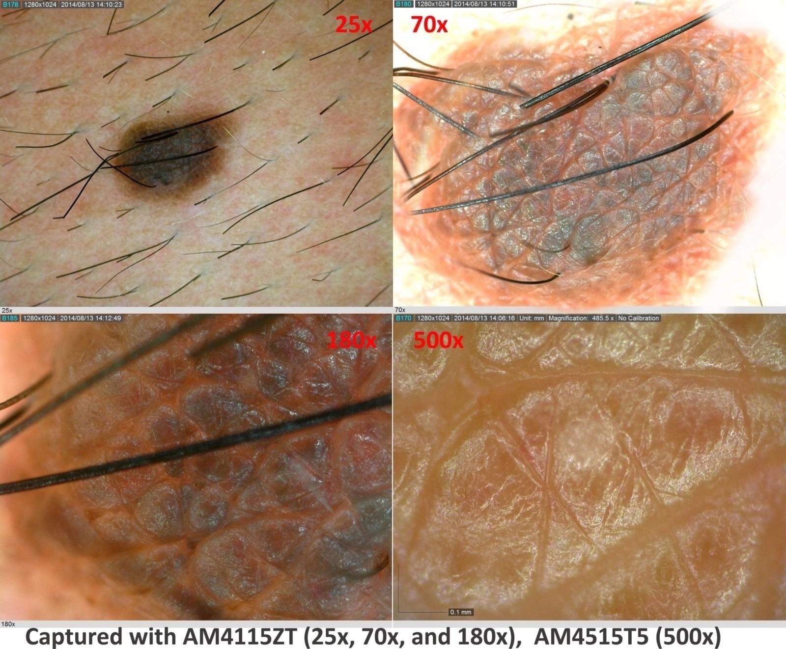 dermatology_10r